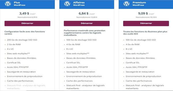 Avis One.com - Forfait WordPress