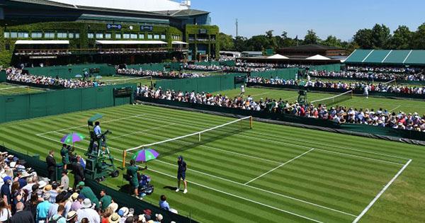 Chaînes Wimbledon