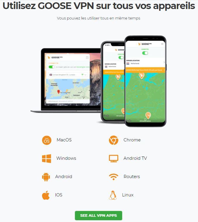 compatibilite Goose VPN